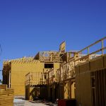 Construction of flamingo pines community.